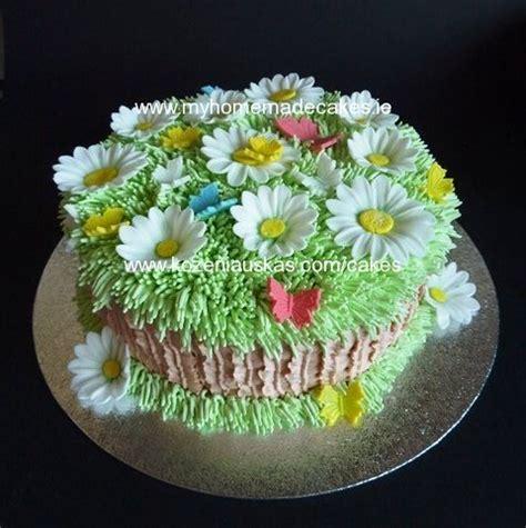 daisy cake  homemade cakes