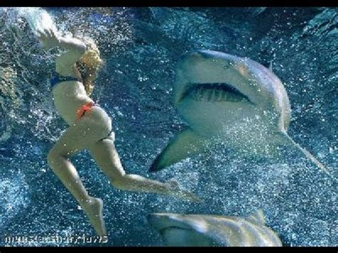 SHARK ATTACKS caught on tape - YouTube