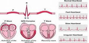Act Study Guide For Ecg Certification