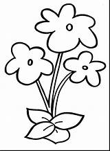 Coloring Flower Pages Printable Print Sheets Getcolorings Fascinating Crafty sketch template