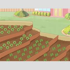 How To Prevent Soil Erosion 15 Steps (with Pictures) Wikihow