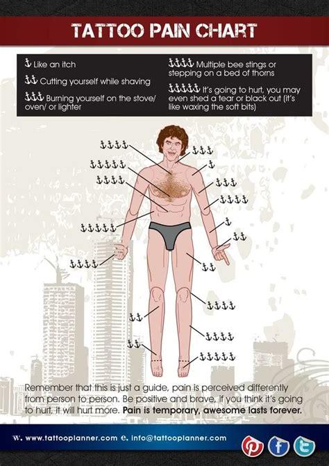Tattoo Pain Chart How Much Will It Hurt Wild Tattoo Art