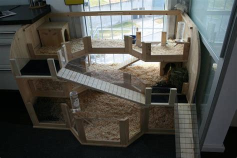 Creative Rabbit Hutches - 17 best images about cages on guinea pigs
