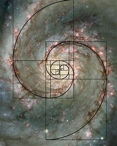 Fibonacci Sequence In Architecture | www.imgkid.com - The ...