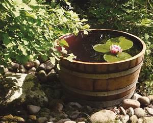 Miniteich Pflanzen Set : miniteich auf balkon und terrasse sch ner wohnen ~ Buech-reservation.com Haus und Dekorationen