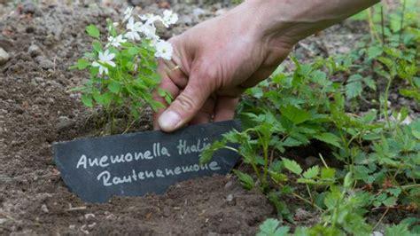 Garten Pflanzen Beschriften by Pflanzen Beschriften Pflanzenschilder Selber Machen