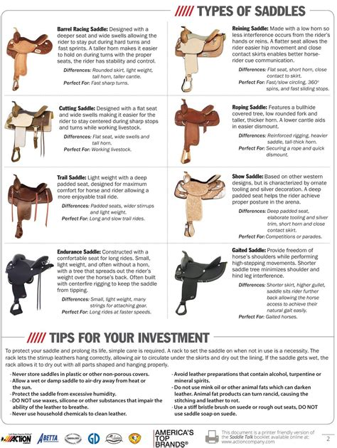 types horse saddles western saddle horses riding tack different information english facts tips bits barrel bridles trail equestrian differences breeds