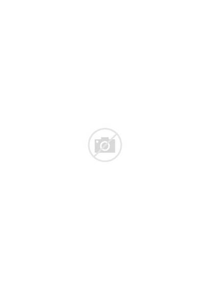 Larkspur Flower Drawing Birth July Drawings Colouring