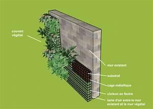 Faire Un Mur De Cloture : les 25 meilleures id es de la cat gorie mur vegetal sur ~ Premium-room.com Idées de Décoration