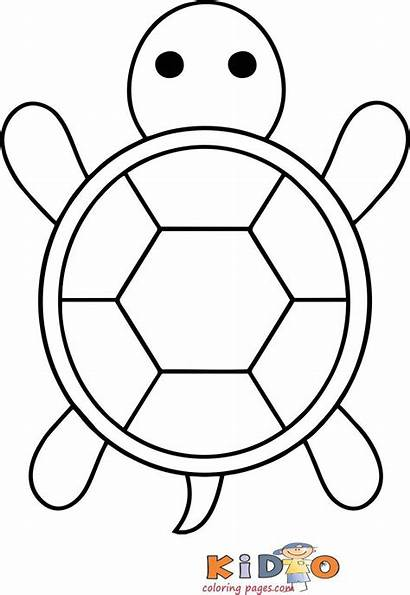 Coloring Pages Turtle Sea Dinosaurs