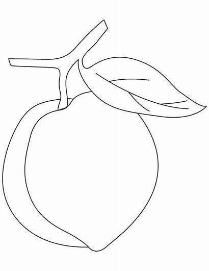 Peach Coloring Pages Fruit Printable Drawing Templates