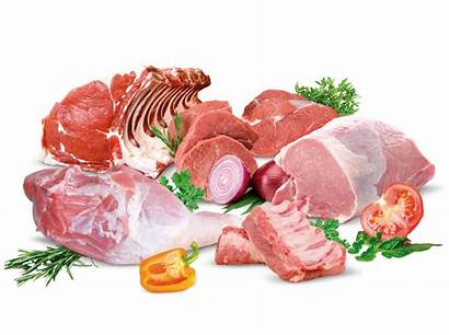 Carne Carnes Meat Bodegon Contacto Madrid
