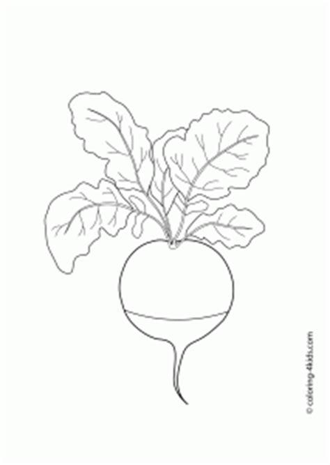 radish vegetables coloring pages  kids printable