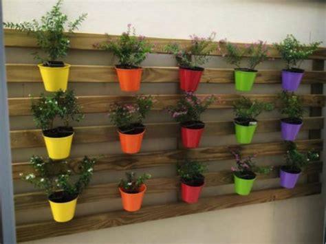 bonitas formas de decorar la casa  plantas de