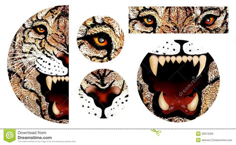 hand drawing  tiger face stock illustration