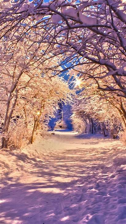 Winter Iphone Wallpapers Snow Trees Road Backgrounds