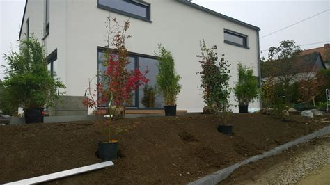 Sichtschutz Terrasse Modern by Sichtschutzbepflanzung Moderner Sichtschutz Im Garten