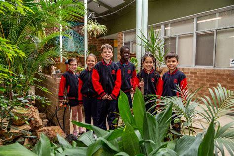 school overview eddystone primary school