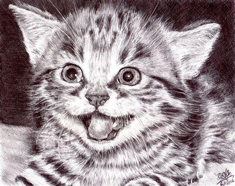 ballpoint  drawing   cute kitten  fb art page