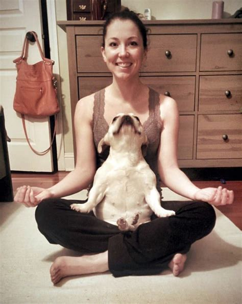 dog loves  yoga