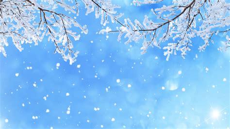 Wallpaper Winter snow, Snowfall, Branches, 5K, Nature, #3846