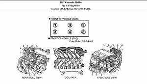 Gm 3400 Sfi Engine Diagram  Gm  Free Engine Image For User