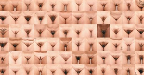 Pubic Hairstyles For With Photos by Project Bush How A Photography Collection Of S