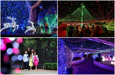 canberra christmas lights set world record photos