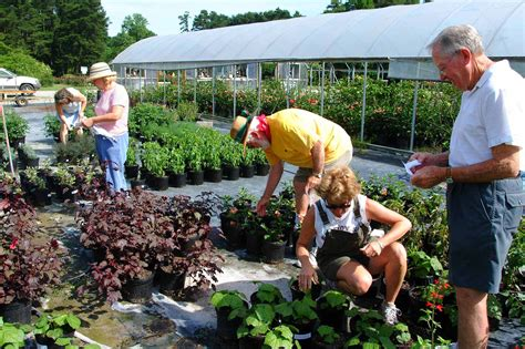 the of gardening make friends by growing a garden stitch