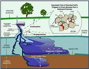 dense non-aqueous phase liquids in an aquifer