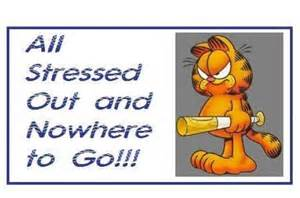 Garfield Funny Stress Quotes
