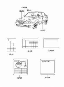 Hyundai Elantra Label