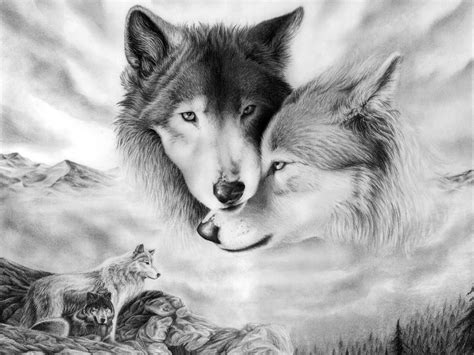 Pair Of Wolves, Black And White, Couple, Drawing, Two