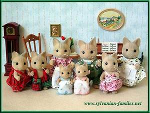 17 best images about sylvanian families on pinterest With katzennetz balkon mit sylvanian families garden set