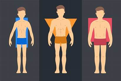 Workouts Types Tipo Endomorph Che Allenamento Corpo