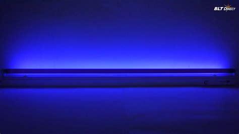 fluorescent blacklight blue