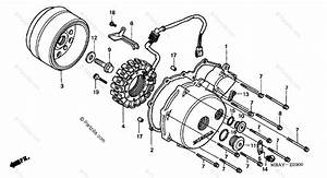Honda Motorcycle 2000 Oem Parts Diagram For Left Crankcase