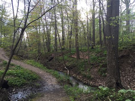 ravine park wikipedia