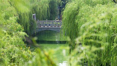 full hd wallpaper bridge willow river china desktop