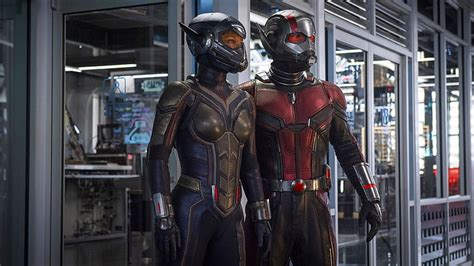 HD wallpaper: Antman and Wasp, Marvel Cinematic Universe ...