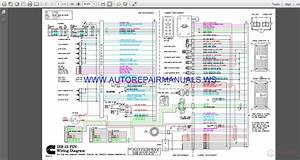 Cummins Isb 23 Pin Wiring Diagram Manual