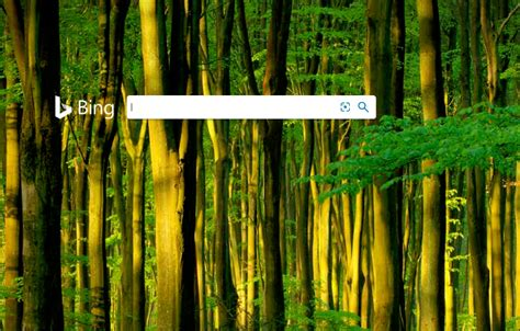 Bing Wallpaper Changes Your Desktop Wallpaper Daily To Lift Your Spirits Sg