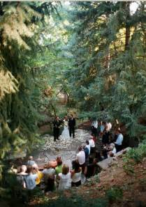 forest wedding venues an outdoor forest wedding the modern guide