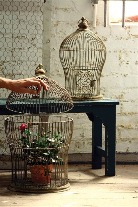 bird cage decoration give your home a chic decor by reusing your bird cage