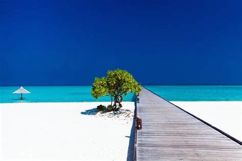 tropical vacations maldives planetware
