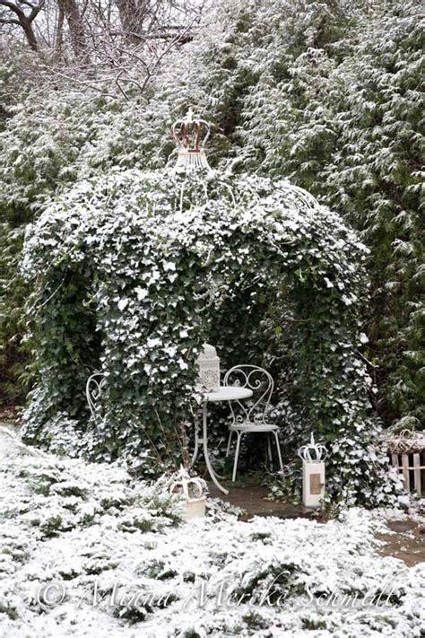 ideas  winter garden  pinterest winter