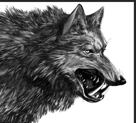 direwolf  song  ice  fire wiki fandom powered