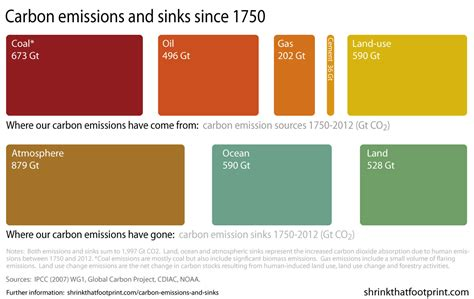 define the word carbon sink shrink that footprint sea