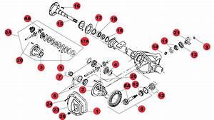 Jeep Tj Wrangler Dana 35 Rear End Diagram  Jeep  Auto Parts Catalog And Diagram
