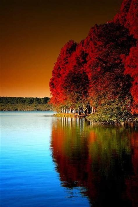 Scenery Picture by Nature At Its Best God S Creations Nature Scenery